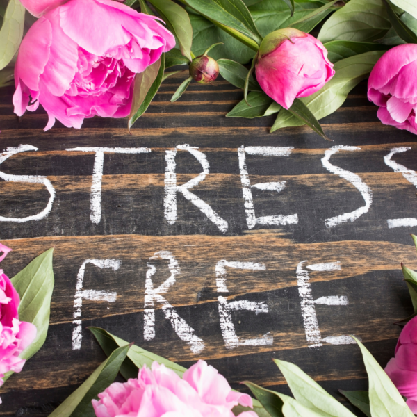 Spring into a Stress-Free Season