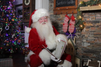 Personalised video message from Santa