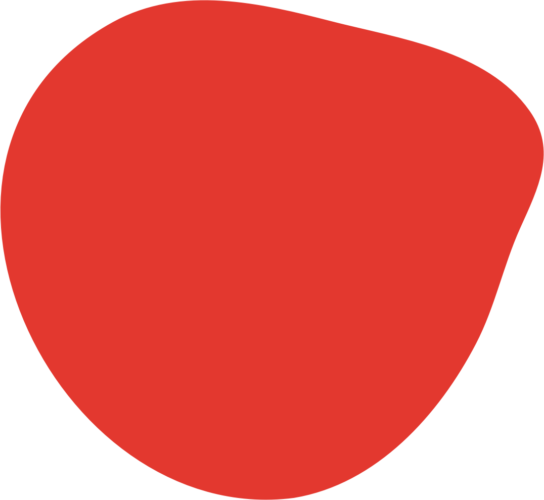NICHS logo blob shape